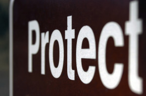 +-PROTECT